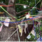 TraciBunkers.com - The Wishing Tree - 07